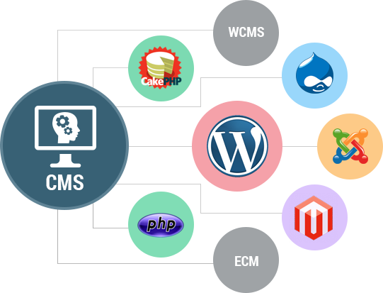 Website Designing services in Bhopal
